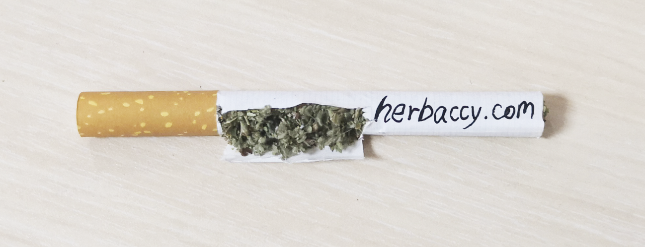marshmallow leaf for herbal cigarettes